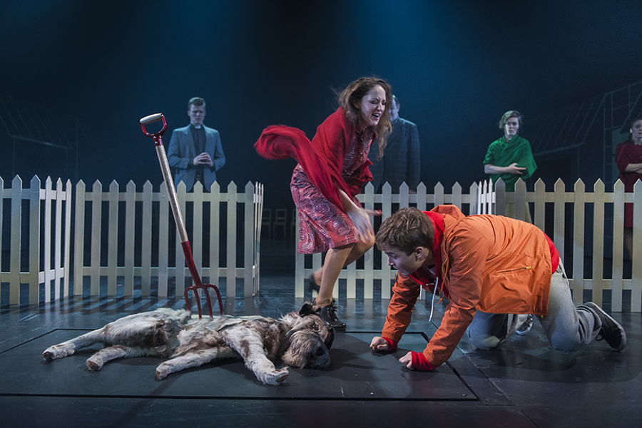 a curious incident of the dog in the nighttime